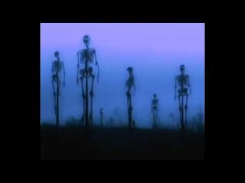 [FREE] joey bada$$ xxxtentacion type beat | 'skeletons' (prod. brayden potts)