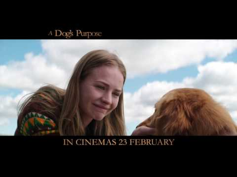 A DOG'S PURPOSE l OLD FRIENDS l IN CINEMAS 23 FEBRUARY