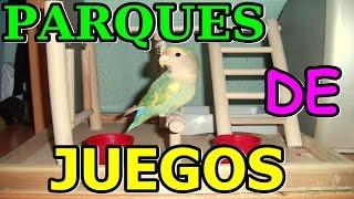 Parques de JUEGOS para agapornis, ninfas y periquitos