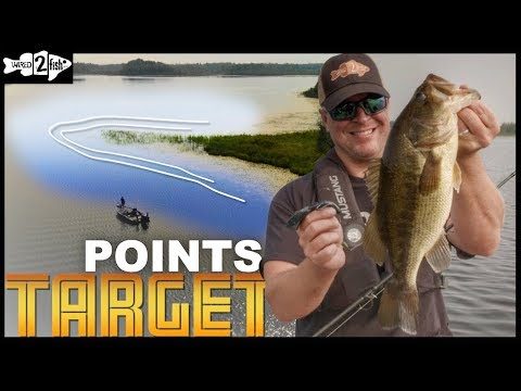 How to Find Bass on Featureless Grass Lakes - YouTube