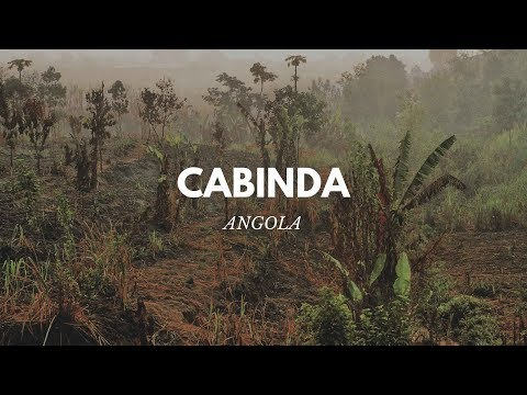 ANGOLA - VOYAGE À CABINDA