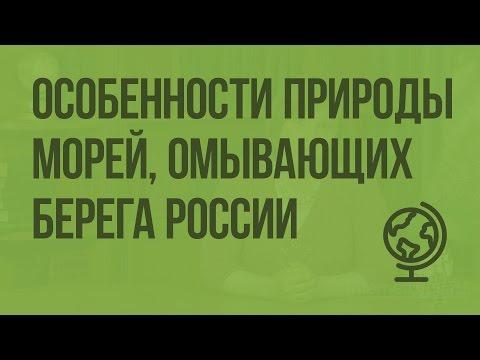 Особенности природы морей, омывающих берега России