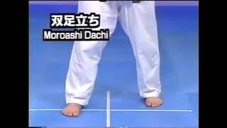 Kyokushin 101: Stances