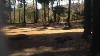 http://www.biwako-visitors.jp/search/spot.php?id=1699.