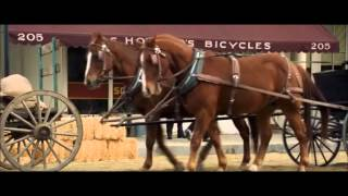 Seabiscuit: The Model T thumbnail