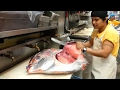 Giant Opah Fish Fillet Cutting Techniques Skills Compilation