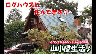 【ログハウス生活】フィンランド製の小さなログハウス外観