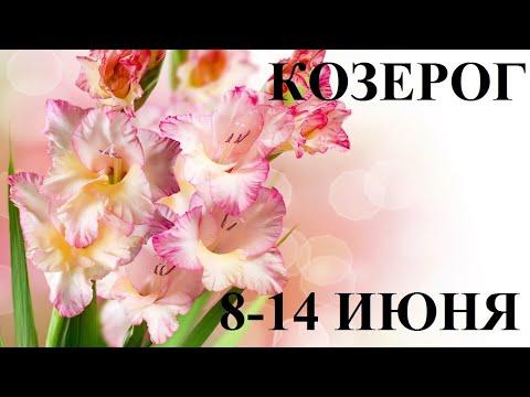 КОЗЕРОГ 8-14 ИЮНЯ ТАРО ГОРОСКОП