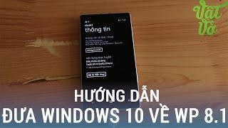 Vật Vờ  Cách hạ từ Windows 10 về Windows Phone 8.1 dễ nhất với 2 bước
