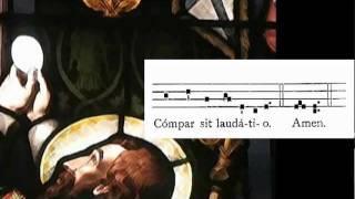Tantum Ergo Sacramentum