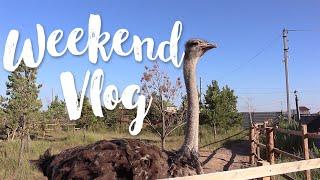 VLOG: День на природе | Как мы ездили на