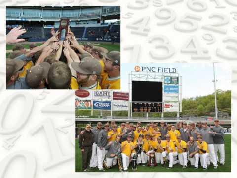 BeeBall: Changing Division III Baseball Through Statistical Analytics by Stevan Zlojutro