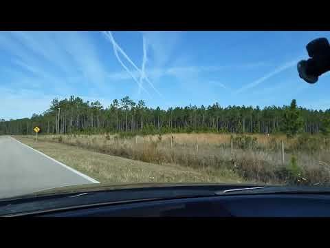 A Ride Down Maytown Rd. From Oak Hill Fl, To Osteen Fl,