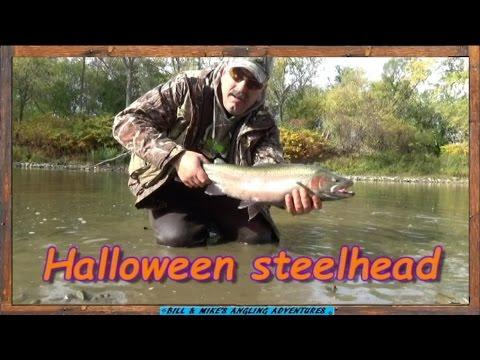Halloween STEELHEAD fishing -  Landed 10 on local Erie tributary