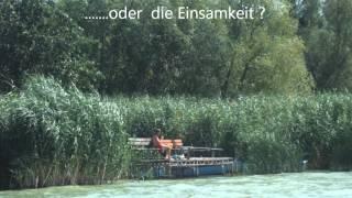 Ungarn - Plattensee (Gasthof und Camping Eldorado)