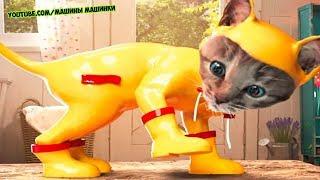 ПРИКЛЮЧЕНИЕ МАЛЕНЬКОГО КОТЕНКА - мультик для детей и малышей МИМИМИШКА мультфильм про котят на #ММ