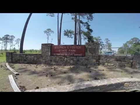 Stephen C Foster State Park Okeefenokee Swamp