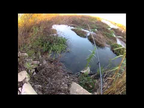Fishing The Santa Ana River In Riverside For Bass