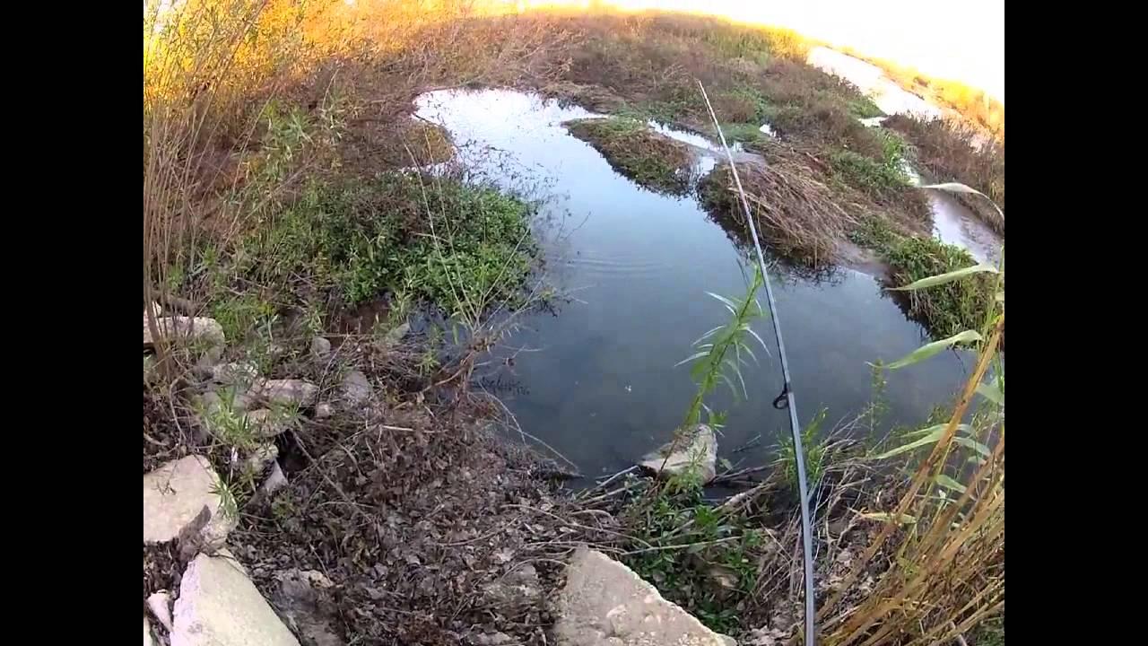 Fishing the santa ana river in riverside for bass youtube for Santa ana river lakes fishing