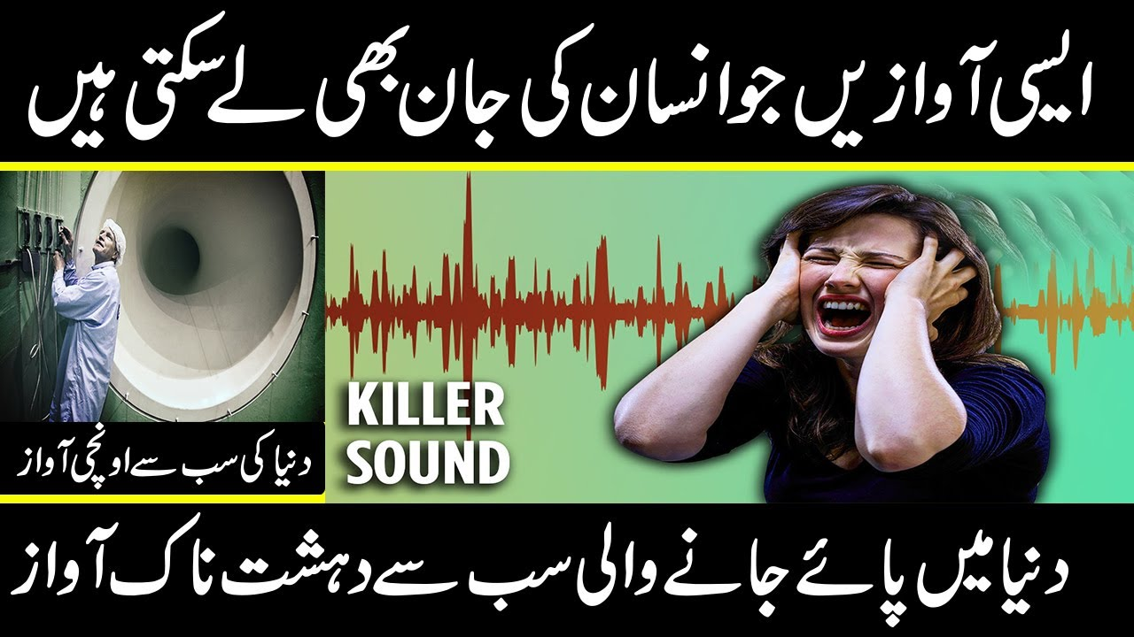 loudest and painful sound in the world that can kil you in urdu hindi   urdu cover