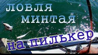 Ловля минтая на пилькер Ливадия бухта Авангард Приморский край 2020