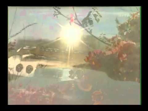 Beach Boys - All I Wanna Do [OFFICIAL VIDEO] HD