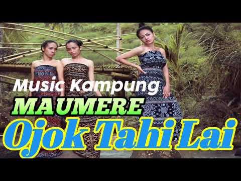 Lagu Daerah Maumere Terbaru    Ojok Tahi Lailagu123 Mobi