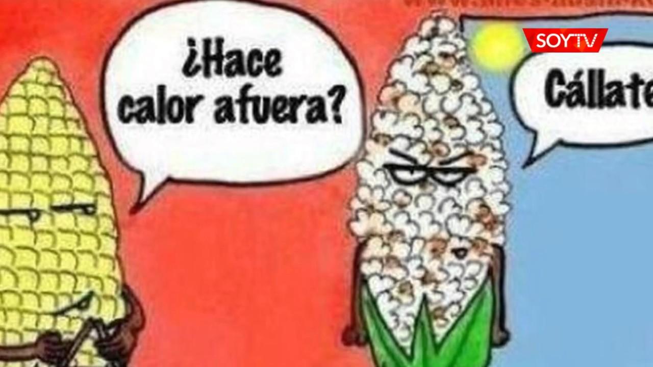 Los Memes Que Ha Dejado La Ola De Calor En Santiago