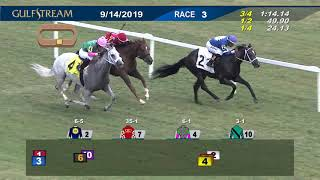 Gulfstream Park Replay Show | September 14, 2019