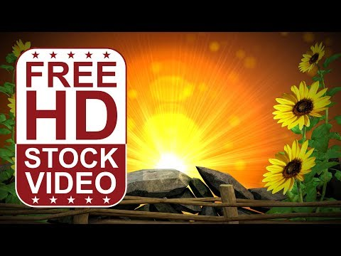 FREE HD video backgrounds - flowers sun flowers frame with lens flare and particles thumbnail