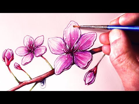 How to Paint Cherry Blossoms - Watercolour Painting