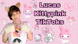 Lucas Kittypink TikToks