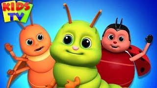 Bugs Song + More Kids Song & Baby Nursery Rhymes