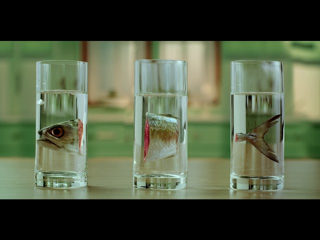 Fish Water-Vim Extra Anti Smell