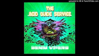 THE ACID GUIDE SERVICE - In the Cemetery  **including lyrics**