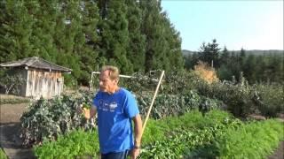 Creating Good Soil - Back To Eden Garden - L2Survive with Thatnub