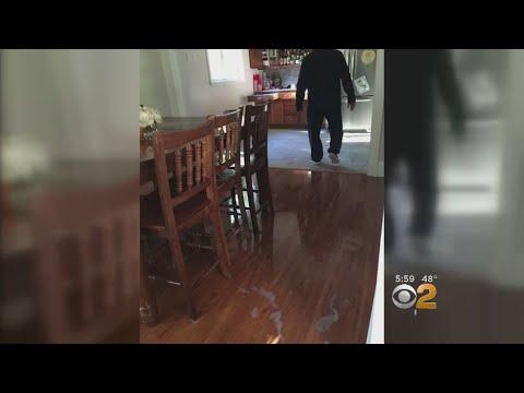 Burglars Flood Port Jefferson Station Home