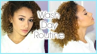 My CURLY HAIR Wash Day Routine (Cleaning, Conditioning & Detangling)