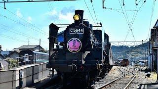 【C56 44】大井川鐵道SL急行かわね路1号の旅【さくらHM】20190324