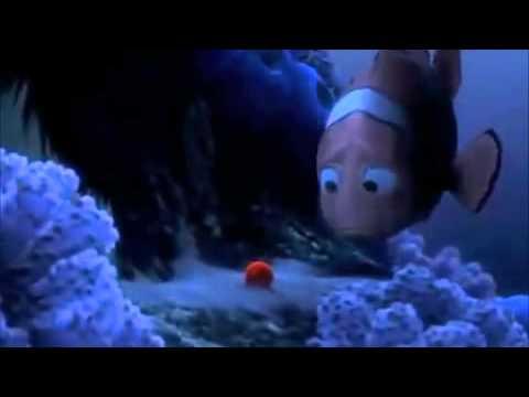 Finding Memo - Nemo Egg Scene
