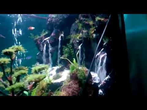 87 Gambar Air Terjun Aquascape Terlihat Keren