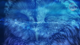 Sleep Anxiety Treatment -  3 Hours of Relaxation Music to Guide a Deep Sleep