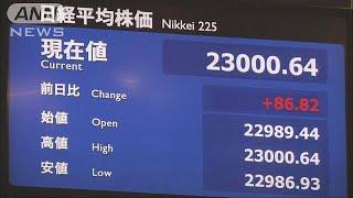 平均株価が乱高下。一時、26年ぶりに2万3000円を超えました。 ・・・記...