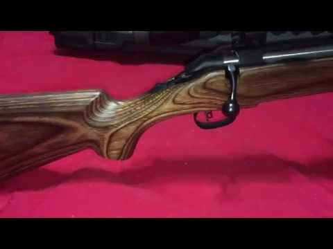 Ruger American Rifle 30-06 With Boyds Stock