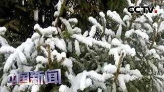 [中国新闻] 中国多地大风降温雨雪齐上阵 | CCTV中文国际