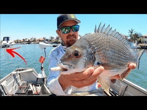 BRIBIE ISLAND | Fishing And Crabbing.