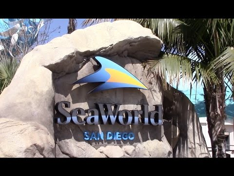 SeaWorld San Diego Full Park Review