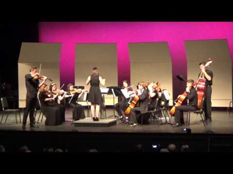 Woodgrove High School Spring 2016 Orchestra Concert--Chamber Orchestra