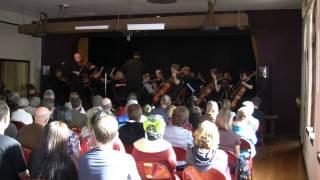 Friedrich Seitz: Concerto No. 5 - 1st Movement
