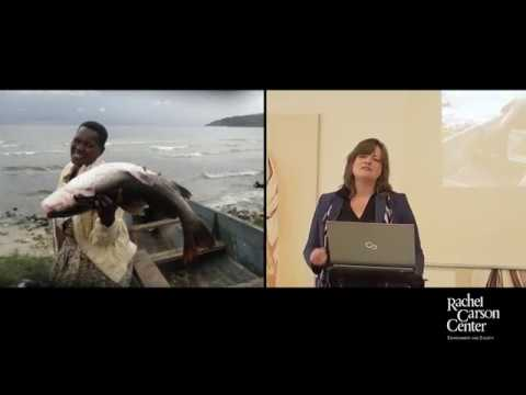 Lunchtime Colloquium: Jennifer Lee Johnson